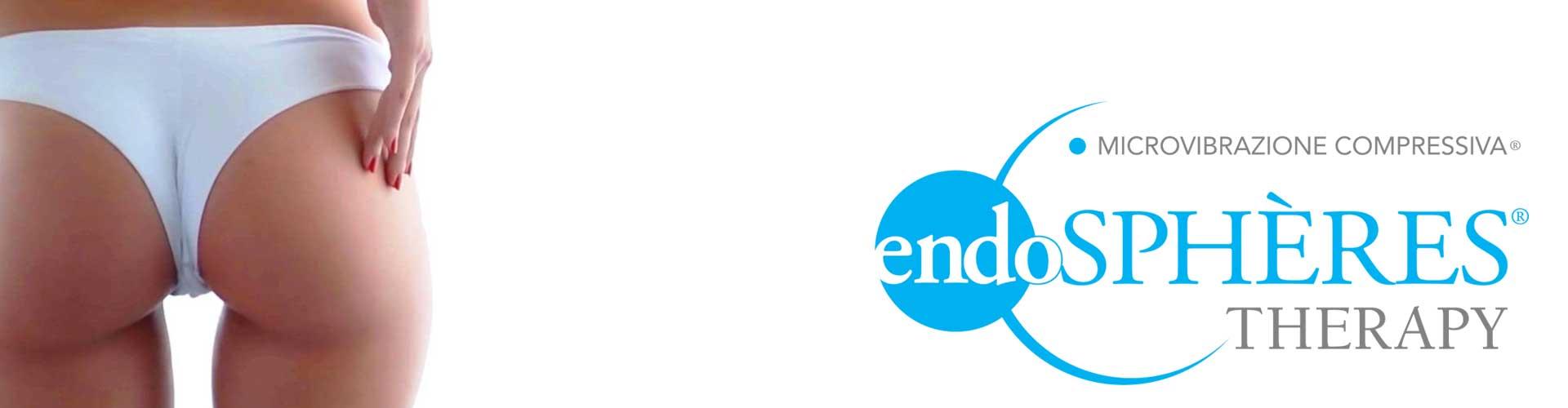 Endospheres Logo